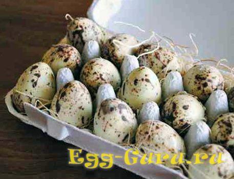 повышают или нет перепелиные яйца холестерин