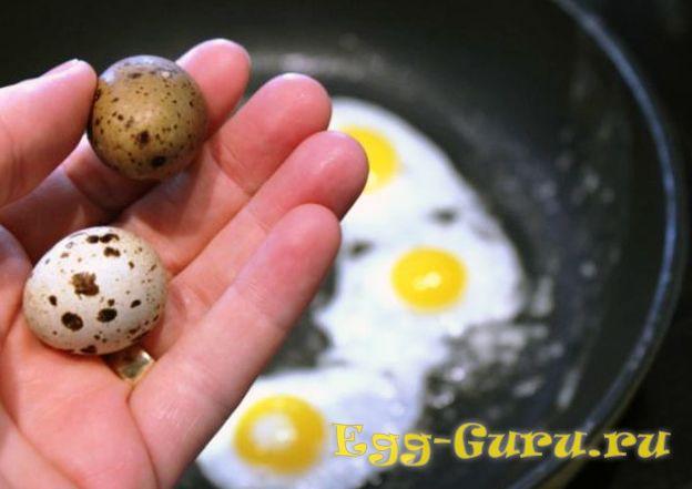 сколько можно есть перепелиных яиц при повышенном холестерине