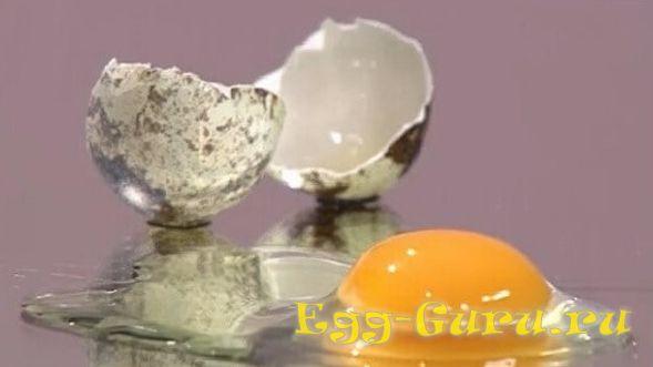 определение свежести перепелиных яиц в домашних условиях