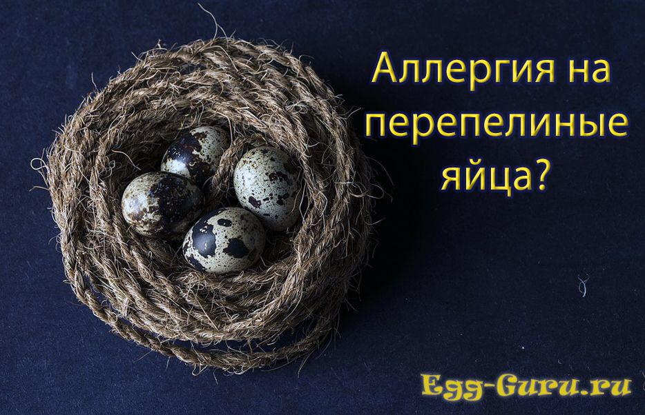 Аллергия на перепелиные яйца