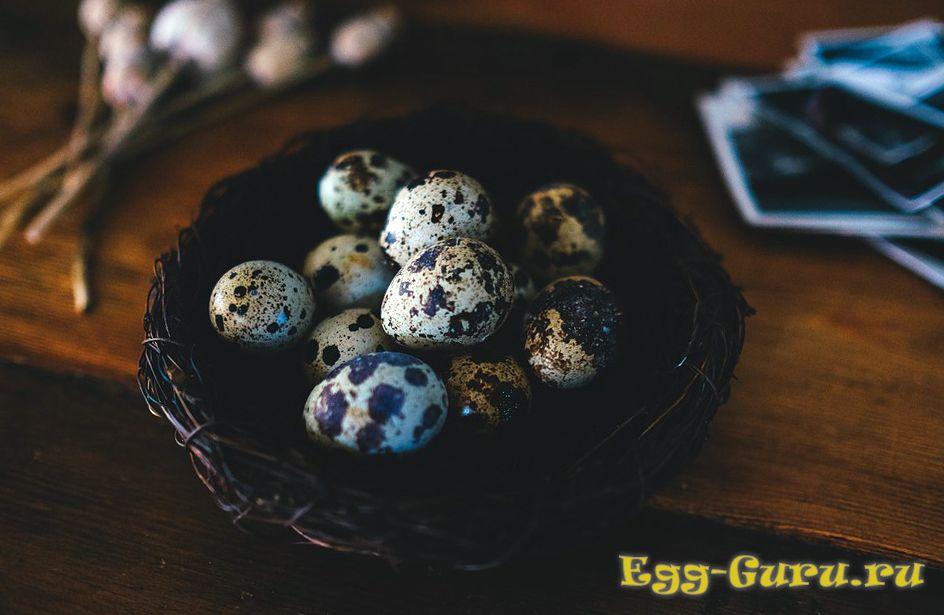 Перепелиные яйца: вред и польза