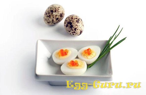 Яйца перепёлки