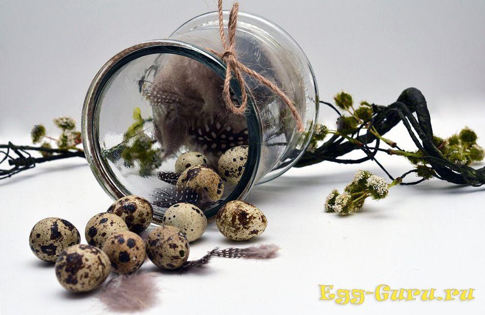 Питьё перепелиных яиц