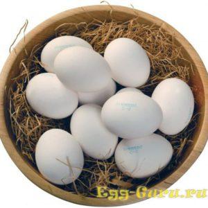 Яйцо куриное 2 категории
