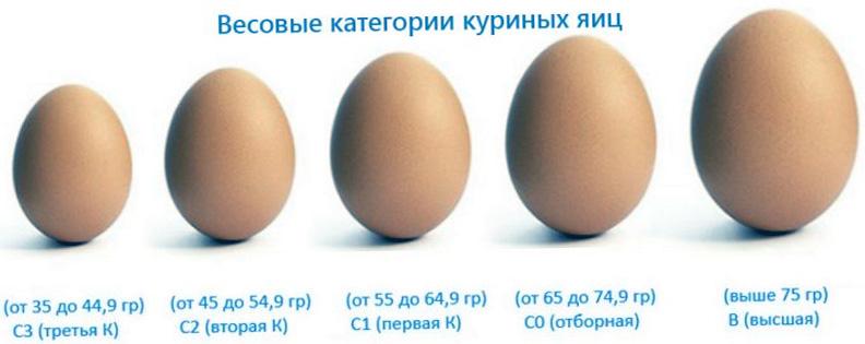 Категории куриных яиц в зависимости от веса