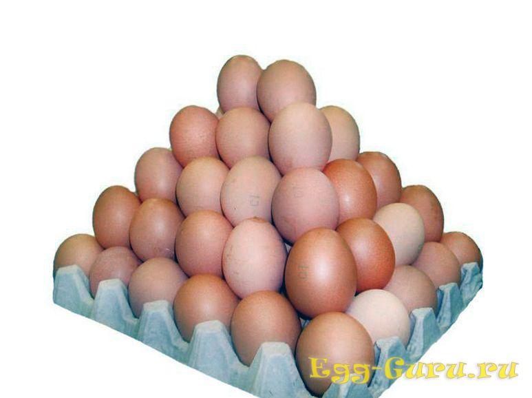 Чем отличаются куриные яйца 3 категории