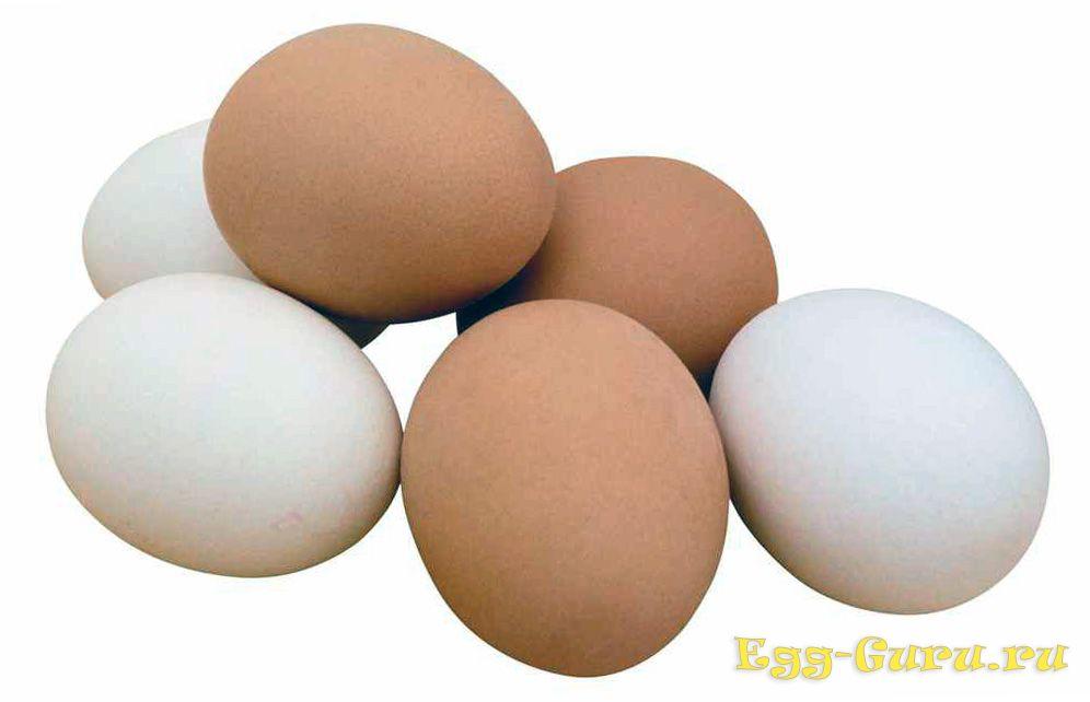 Отличия категорий куриных яиц