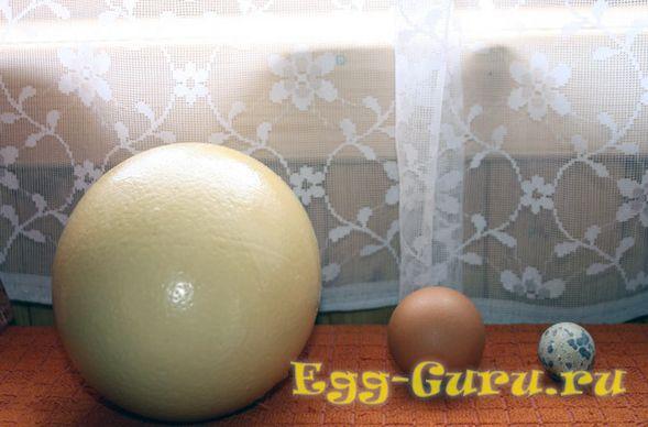 Три различных яйца
