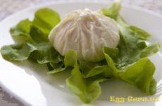 Яйцо пашот в пищевой пленке — рецепт