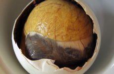 Яйца балют (та еще экзотика)
